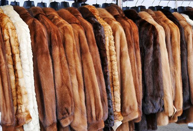 zwanzig verschiedene Pelzmäntel